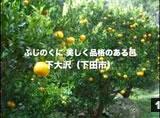 01下大沢
