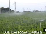 49菅山原