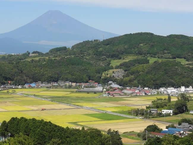 函南町丹那盆地と富士山の眺め