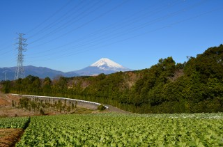 三島箱根西麓地区からの富士山
