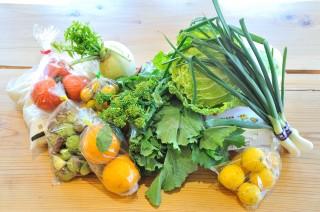 日野の新鮮な野菜