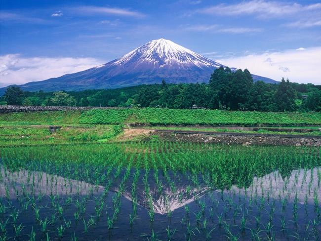 柚野の田んぼの水鏡に映る富士山