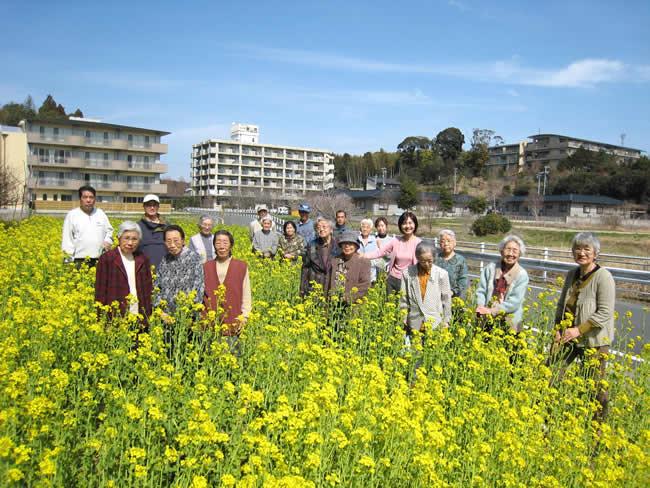 浜松市西区和地ふるさと会の菜の花畑