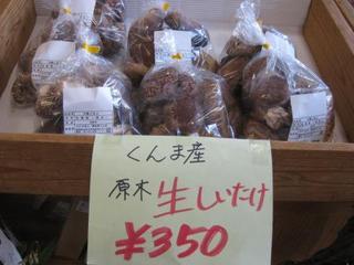 くんま産 生椎茸