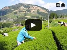【動画】~『農業生産性』と『生物多様性』の共存~