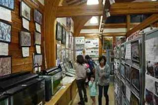 桶ケ谷沼ビジターセンターにも多くの人が訪れていました。