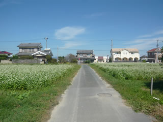 万斛村と呼ばれた肥沃な地域