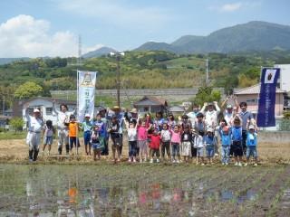 浮島田植え1