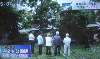 静岡第一テレビ