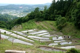 集落を包み込む里山の自然環境