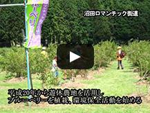 【動画】霊峰富士を仰ぎ見る地域一丸となったチャレンジ精神旺盛な農村環境の保全継承