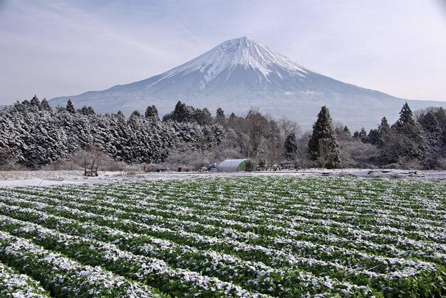 白糸の里(富士宮市)