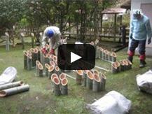 【動画】外部組織との連携から始まった「韮山竹灯籠まつり」
