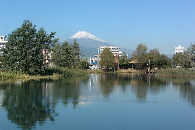 中郷温水池と逆さ富士