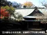 15韮山多田