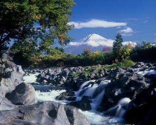 芝川の向こうに広がる富士山