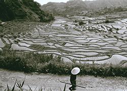 昭和40年代の棚田