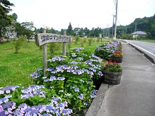 紫陽花の季節のロマンチック街道