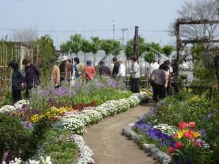 花あふれる自慢のお庭を大公開