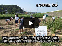 【動画】とんぼの楽園「桶ヶ谷沼」の豊かな自然に育む環境にやさしい里の暮らし