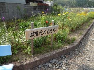 植栽による景観形成