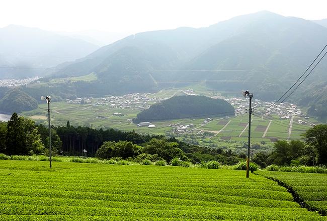 抜里(島田市)