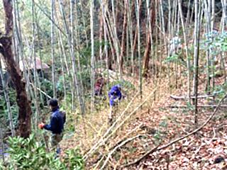 遊休地の再生、森林資源を活かして地域に活力を!