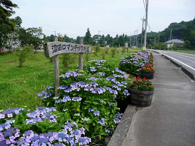 ロマンチック街道(広域農道)