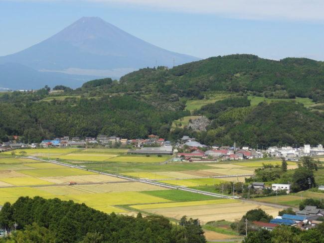 丹那盆地と富士山の景観
