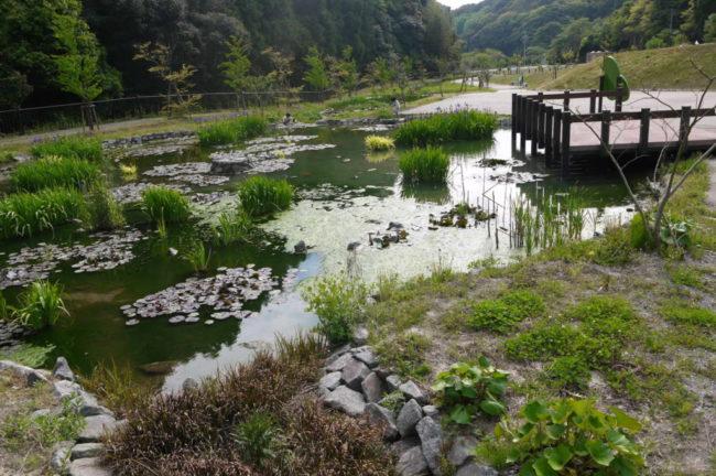 新野水のめぐみ公園