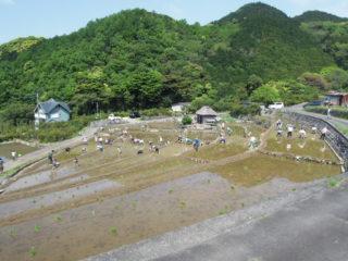 北山の棚田(日本棚田百選)