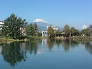 中郷温水池