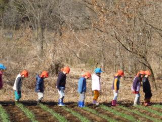 自然環境や農業・農地を活かした体験活動