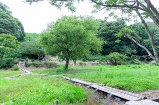 諸井里山公園