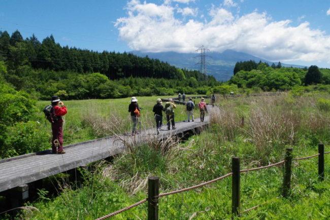 里山体験ツアー