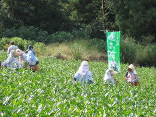史跡が数多く残る東海道の間の宿