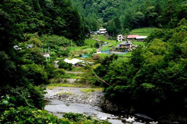 川根茶の産地で最北位置