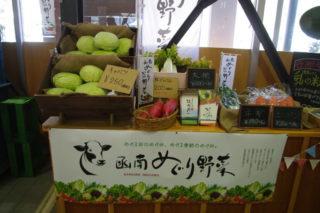 函南めぐり野菜
