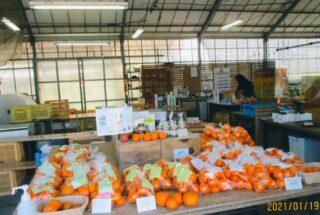 農産物直売所(マルワ農園)