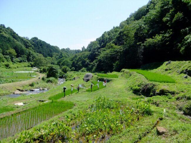 山田川自然の里